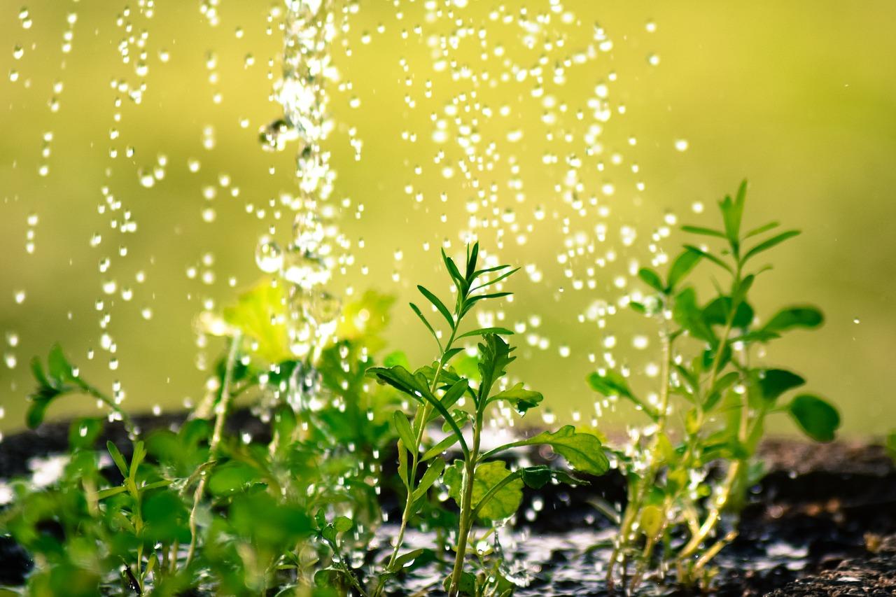 drop-of-water-2342870_1280